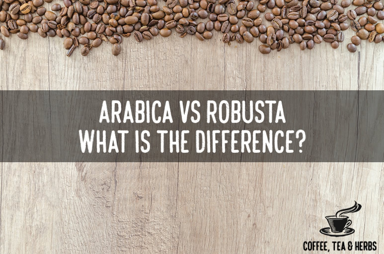 Arabica vs Robusta, What is the Difference