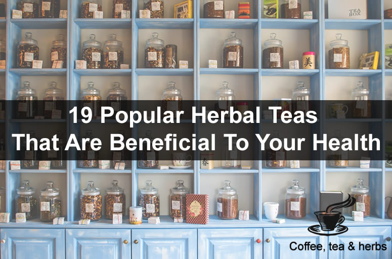 19 Popular Herbal Teas That Are Beneficial To Your Health