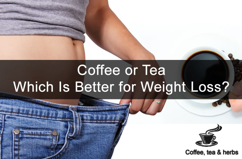 Coffee or Tea - Which Is Better for Weight Loss