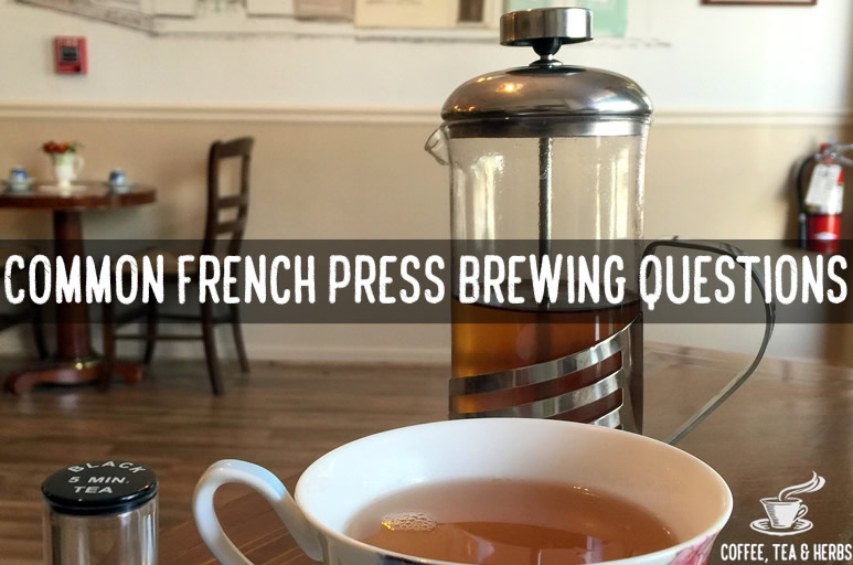 Common French Press Brewing Questions