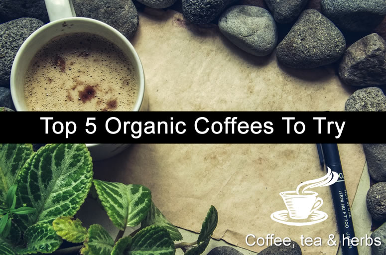 Top 5 Organic Coffees To Try